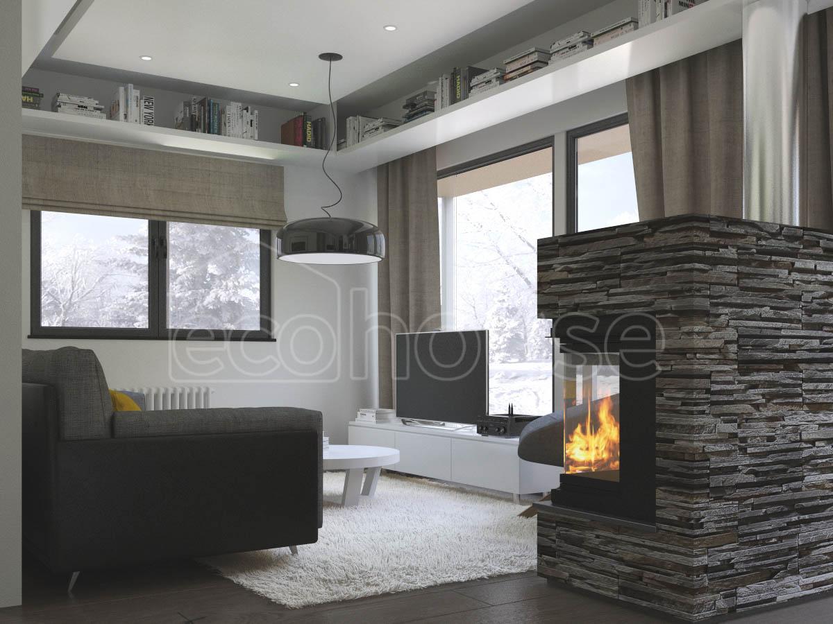 Modern 1 storey Ecohouse Living