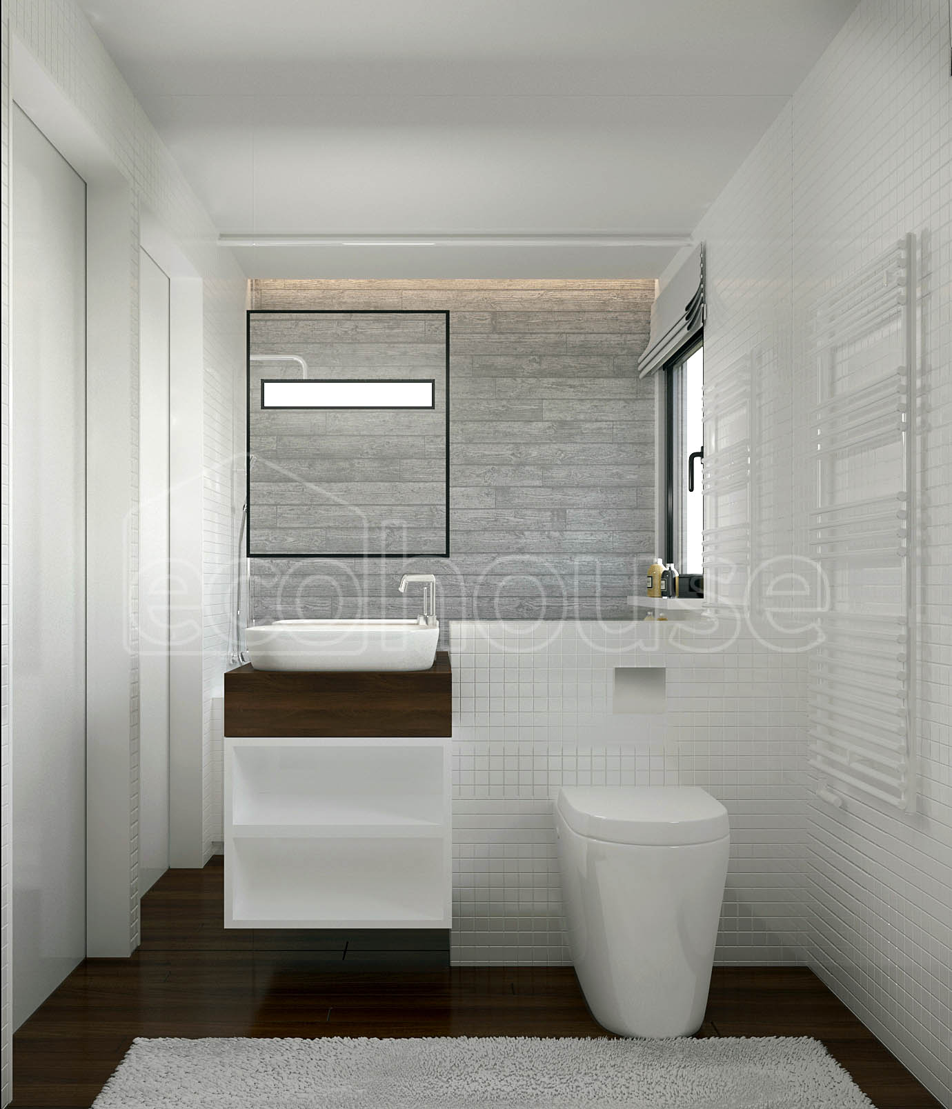 Modern 1 storey Ecohouse Bathroom