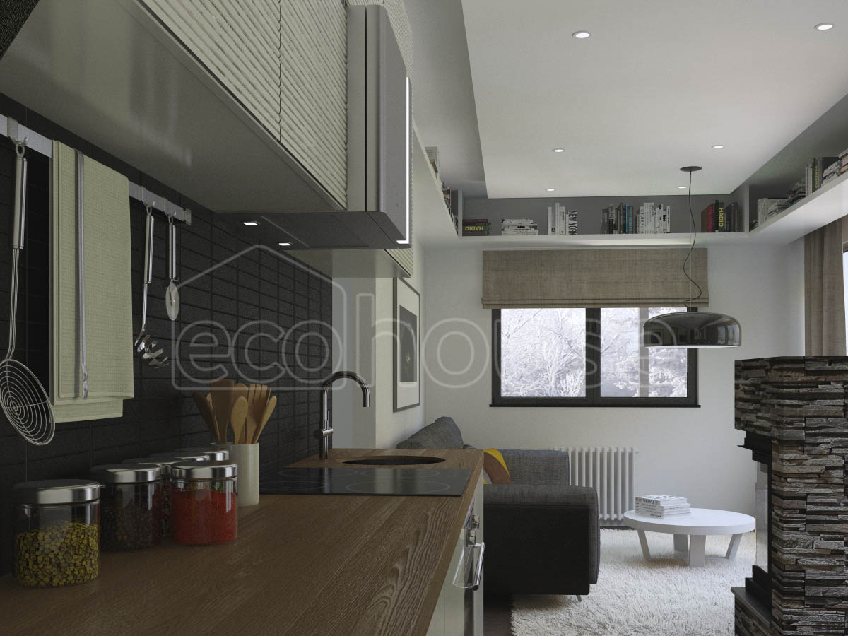 Modern 1 storey Ecohouse Kitchen